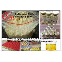 Wholesale 99.6% Purity Boldenone Acetate muscle building steroids Powder CAS 2363-59-9 from china suppliers