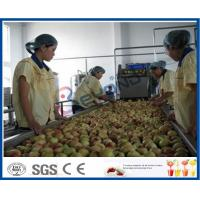 Wholesale Peach / Apricot / Plum Fruit Juice Production Line Fruit Processing Machinery from china suppliers