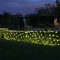 Buy cheap Top View 24v fairy outside christmas lights curtain for garden from wholesalers