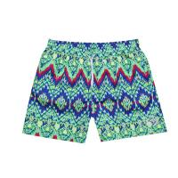 Wholesale Mens Printed Board Shorts 01 from china suppliers