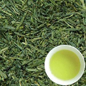 Wholesale natural Japanese organic sencha green tea from china suppliers
