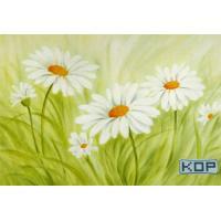 Wholesale Polyester Fabric White Digital Printing Canvas Waterproof 30M For Photos from china suppliers