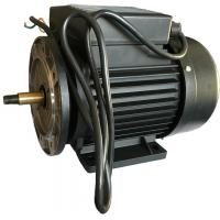 Wholesale Runing AC Motor Single Phase Induction Motor For Swimming Pool Water Pump from china suppliers