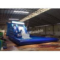 Quality Blue Dolphin Huge Water Slides Inflatable Durable Plato 0.55 mm PVC Tarpaulin for sale