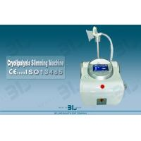 Wholesale 492nm ~ 455nm Cryolipolysis Slimming Machine Without Side Effects from china suppliers