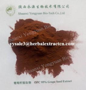 Wholesale natural antioxidant Grape seed Extract, OPC 95%, WHITEN SKIN,  anti wrinkle, anti radiation, Shaanxi Yongyuan Bio-Tech from china suppliers