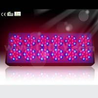 Wholesale Apollo LED Grow Light No. 12 from china suppliers