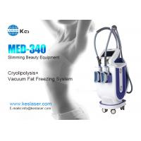 Wholesale 2 Handles Cryolipolysis Machine , Fat Freezing Weight Loss Machine MED-340 from china suppliers