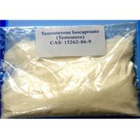 Wholesale Purity 99% Testosterone Isocaproate Peptide Steroid Hormones , CAS 15262-86-9 Fat Loss Steroids from china suppliers