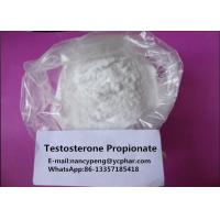 Wholesale Medical Testosterone Steroids Testosterone Propionate White Powder from china suppliers