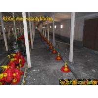 Wholesale Poultry Pan Automatic Auger Feeding System from china suppliers