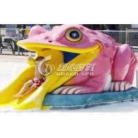 Quality Colorful Small Frog Water Slide / Kids' Water Slides Safety for Aqua Park Playground Equipment for sale