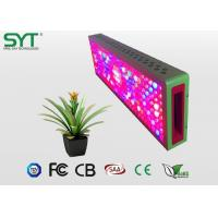 Wholesale Plant Lighting Agriculture LED Lights For Growing Herbs Indoors IP44 Protection from china suppliers