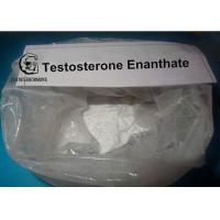 Wholesale Testosterone Enanthate Powders HPLC Tested 99% in performance enhancing cycles from china suppliers