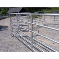 Wholesale heavy duty cattle panel is usually called cattle panel,horse panel,livestock panel,corral panel from china suppliers