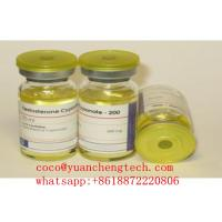 Wholesale Testosterone Cypionate 250mg/ml,Semi Finished Injectable Steroids Cypoject 250, for weight loss and bodybuilding from china suppliers