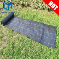 Buy cheap Black color with green line weed mat/ground cover/slit fence/weed control mat for UK market from wholesalers