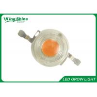 Wholesale Super Bright High Power COB Led Grow Chip Bead Led Diode 350mA 700mA from china suppliers