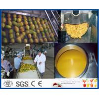 Wholesale Mango Pulp Processing Machinery Mango Processing Line With Aseptic Package Machine from china suppliers