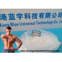 Quality Bodybuilding Testosterone Enanthate Powder Testosterone base  CAS 58-22-0 for sale