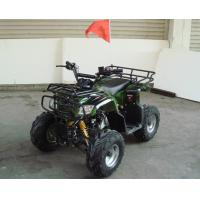 Quality Single Cylinder 110cc Atv Quad Bike SHINERAY 4 Stroke With Rear Rack for sale