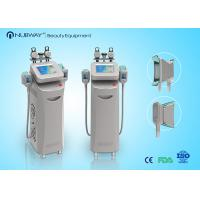 Wholesale Multifunction Cryolipolysis Slimming  Machine with Skin Tightening from china suppliers