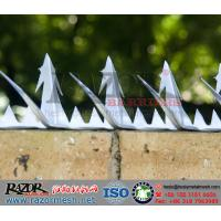Wholesale Steel Wall Spike, Razor Wall Spike System, Fence Spikes, ISO9001:2008 wall spikes from china suppliers