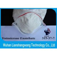 Wholesale Fitness Test E Pure Testosterone Steroid Hormone , Oral / Injectable Testosterone Steroids from china suppliers