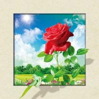 Wholesale Waterproof Flower Images 5d 3D Lenticular Pictures 40x40cm For Restaurant from china suppliers