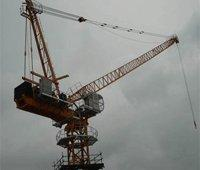 Wholesale Luffing Tower Crane (D160LE8) max load 8t--mingwei@crane2.com from china suppliers