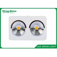 Wholesale High End Cree Led Grow Lights For Indoor Plants , Led Grow Lamp CXB3590 from china suppliers