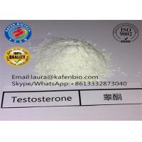 Wholesale 58-22-0 Muscle Body Building Testosterone Steroids Testosterone Base Powder from china suppliers