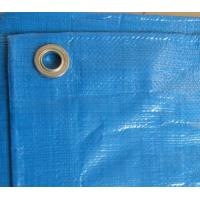 Wholesale blue PE Tarpaulin best for pool cover from china suppliers