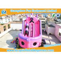 Wholesale Large Pink Inflatable Pirate Ship Bouncer Slide , Outdoor Inflatable Slide For Sport Games from china suppliers