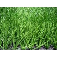 Wholesale 11000 Dtex Synthetic Soccer Grass , landscaping artificial turf for Football from china suppliers