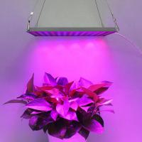 Wholesale Indoor Garden LED Panel Grow Light With Meanwell Driver , 10mm Thickness from china suppliers