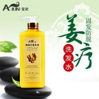 Wholesale natural ginger hair loss prevention shampoo from china suppliers