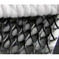 Wholesale Seepage Composite Geotextile For Sea Embankment / 1000g Weight from china suppliers