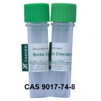 Wholesale Recombinant Enterokinase Enzyme and CAS 9017-74-8 Enzyme Enterokinase from china suppliers
