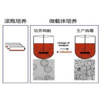 Wholesale Expressed with E.coli , Recombinant Trypsin Inhibitor Aprotinin Forms Stable Complexe from china suppliers