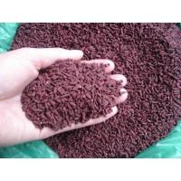 Wholesale Antioxidant Red Fermented Rice Food Grade Preventing Alzheimer S Disease from china suppliers