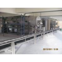 Mannheim process potassium sulphate making equipment & technology