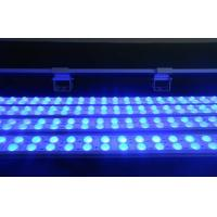 Wholesale 2FT Super Bright Outdoor Wall Washer Led Lighting 17.2 Watts from china suppliers