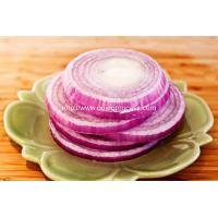 Cutted-Onion-Ring-Product