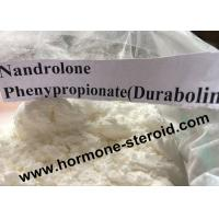 Wholesale Injecting Anabolic Steroids Nandrolone Phenylpropionate / NPP For Nandrolone Steroid 62-90-8 from china suppliers