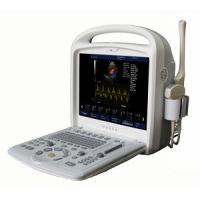Wholesale 15inch Full-digital Color Doppler Ultrasound System Portable With 3D / 4D Software from china suppliers