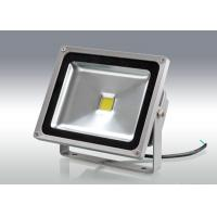 Wholesale Airport 3000Lm Waterproof Led Flood Lights 45mil Bridgelux IP65 casting light from china suppliers