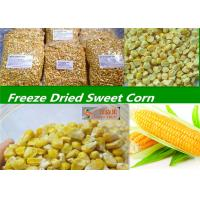 Wholesale Classic Organic Freeze Dried Sweet Corn / Juiciest Bulk Organic Baby Corn from china suppliers