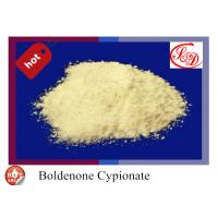 Wholesale 99% Raw Steroid Hormone Boldenone Cypionate CAS106505-90-2 for Fittness from china suppliers