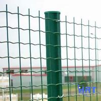 Wholesale PVC coated Holland wire mesh netting factory from china suppliers